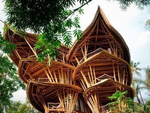 фото необычного дома из бамбука