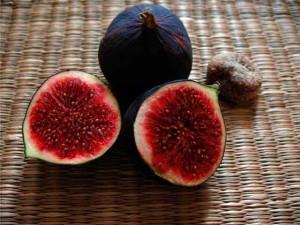 Плод инжира в разрезе фото