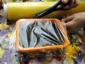 укрытие пленкой посевов семян помидор фото