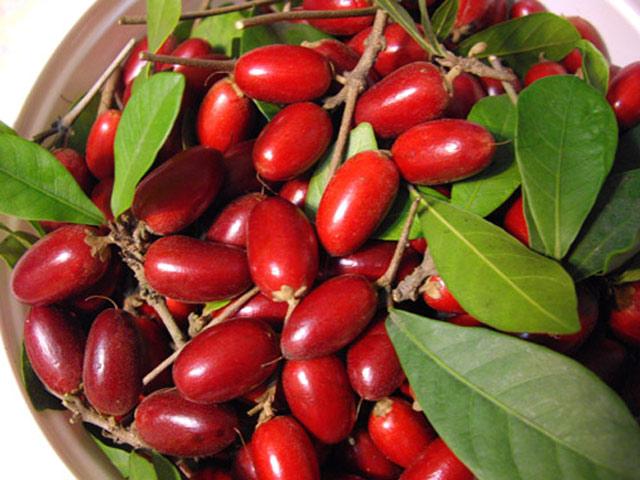 Картинки по запросу фрукты Синсепалум