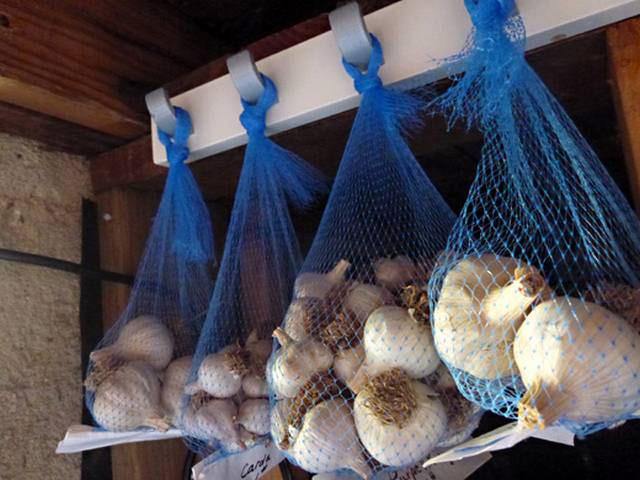 Хранение и сбор чеснока и лука. В статье рассказывается как правильно собрать чеснок и лук, как заложить их на хранение. И каким образом хранить. Фото