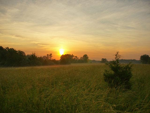 Восход солнца, раннее утро фото